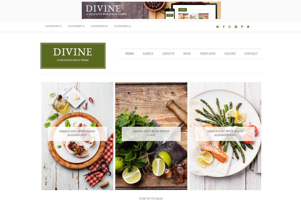 Divine WordPress blog theme