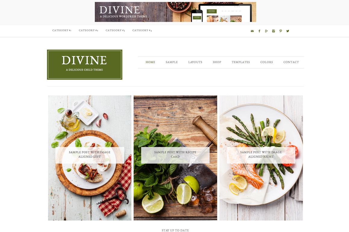 Divine WordPress blog theme