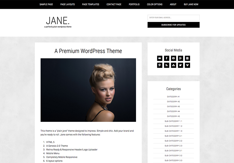 Jane WordPress blog theme