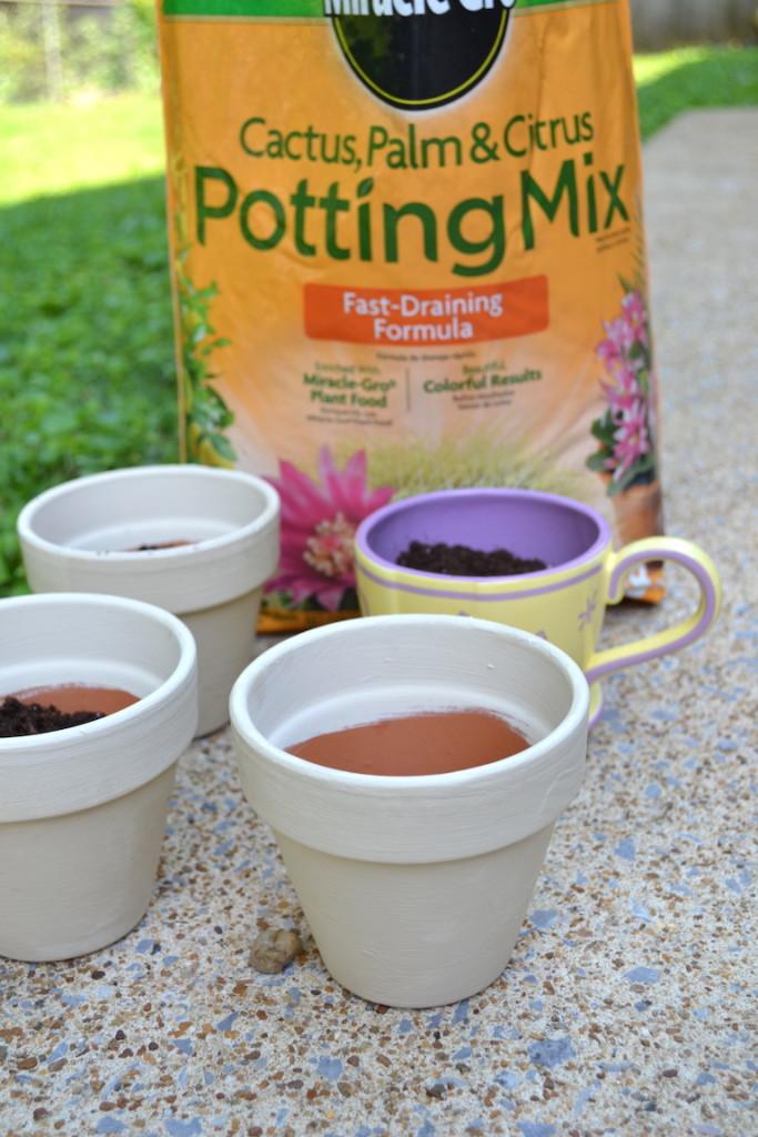 succulents chalk paint pots 9