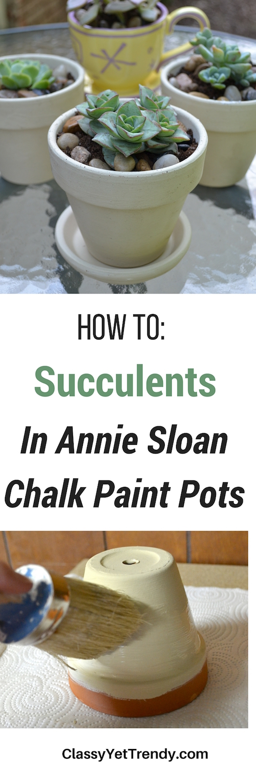 how to succulents in chalk paint pots classy yet trendy. Black Bedroom Furniture Sets. Home Design Ideas