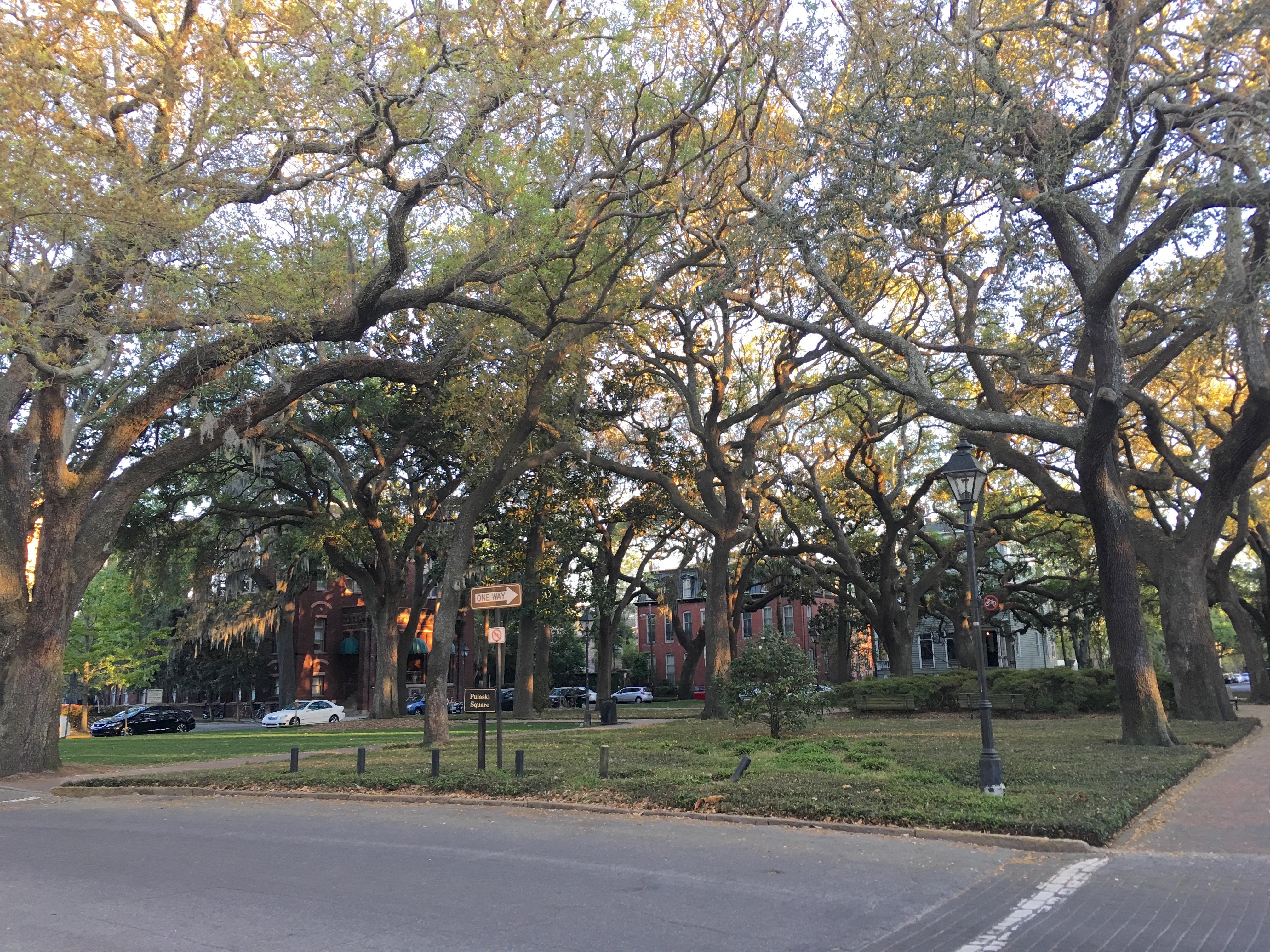 Savannah Ga - Pulaski Square